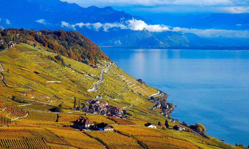 Lake Geneva, Rico Rally
